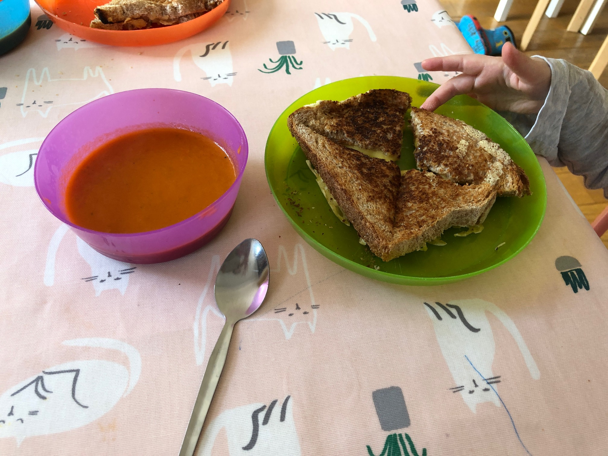 A picture of the soup and grilled cheese sandwich on the table